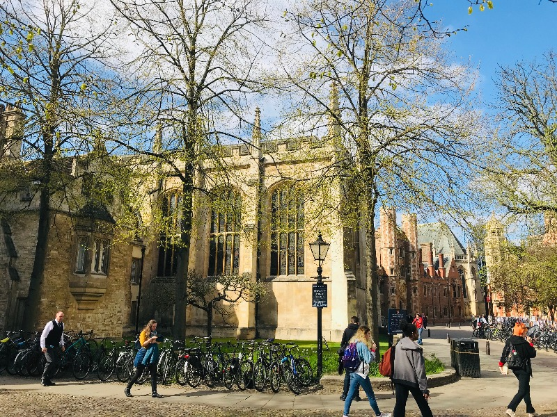 Help for students*applying to Cambridge, Oxford and other leading universities